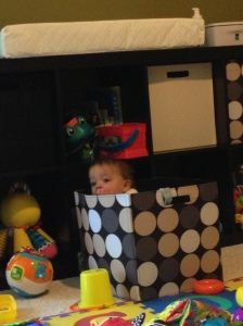All of these toys, and he climbs into the toy box.  Go figgure